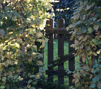 houten poort op maat